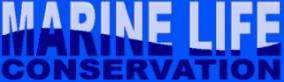 Logo-babyinviaggio-it.png