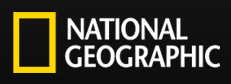 logo for NGMService.com