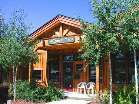 Vacation rentals in breckenridge for Frisco colorado cabin rentals