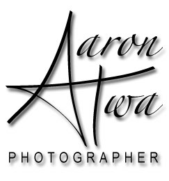 Logo-aarontwa-com.jpg