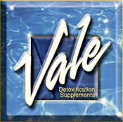 Logo-vale-inc-com.jpg