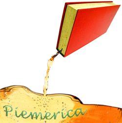 Piemerica book logo.jpg