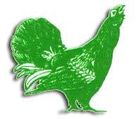 Logo-buero-goetze-de.jpg