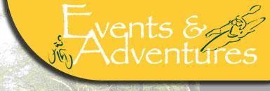 Logo-lotsofevents-com.jpg