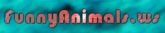 Logo-funnyanimals-ws.jpg