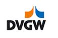 Logo-dvgw-net.png