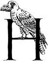 Logo-erfa-info.jpg