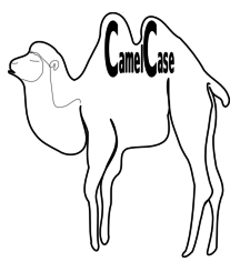 CamelCaseExample.png