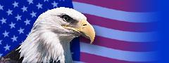 Logo-allamericanpatriots-com.jpg