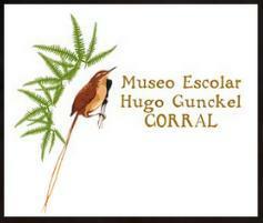 Museo escolar H Gunckel.jpg