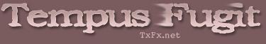 Logo-txfx-net.jpg