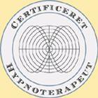 Logo-aktivintelligens-dk.jpg
