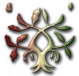 Logo-bibrax-org.jpg