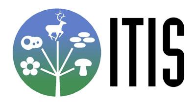 Logo-itis-gov.jpg