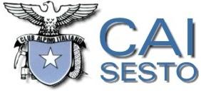 Logo-caisestosg-it.jpg