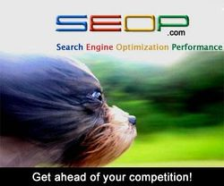 SEOP: Get Ahead of Your Competition