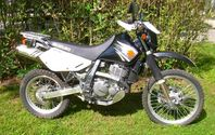 Suzuki 650 Dual Sport Motorcycles for Rent