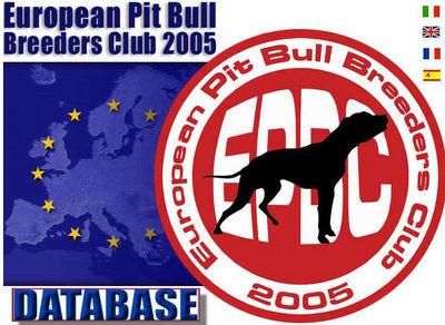 Logo-europeanpit-org.jpg