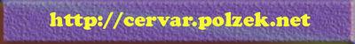 Logo-polzek-net.jpg