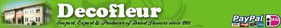 Logo-decofleur-com.jpg