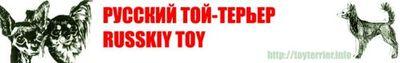 Logo-toyterrier-info.jpg